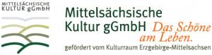 Mittelsächsische Kultur gGmbH - Musikschule